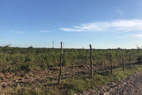 Se vende terreno en El Roble - Mazatlán