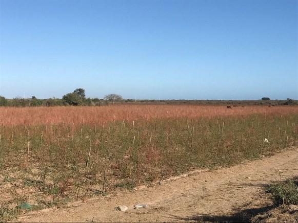 Se vende terreno en El Walamo - Mazatlán