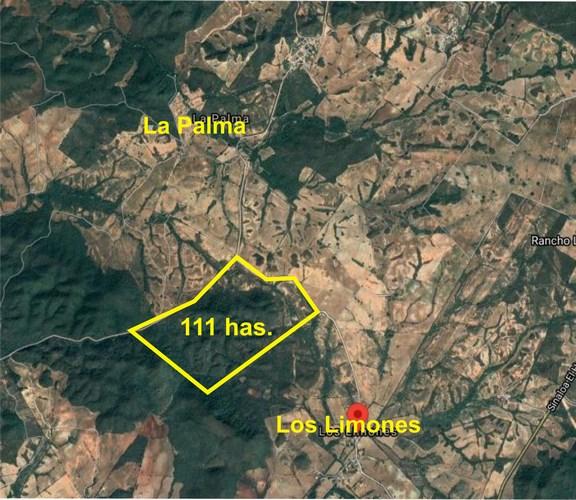 Se vende Rancho La Hormiga- Mazatlán
